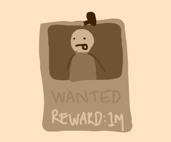 Wanted person poster