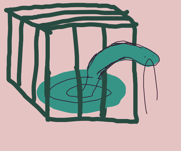 trapped snake