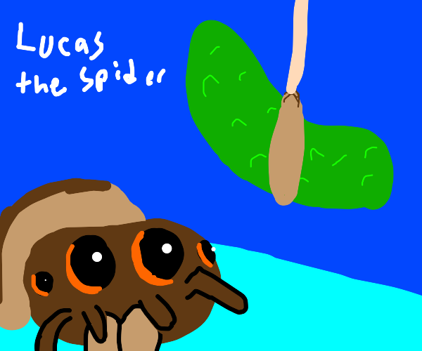 Lucas the Spider really likes cucumber