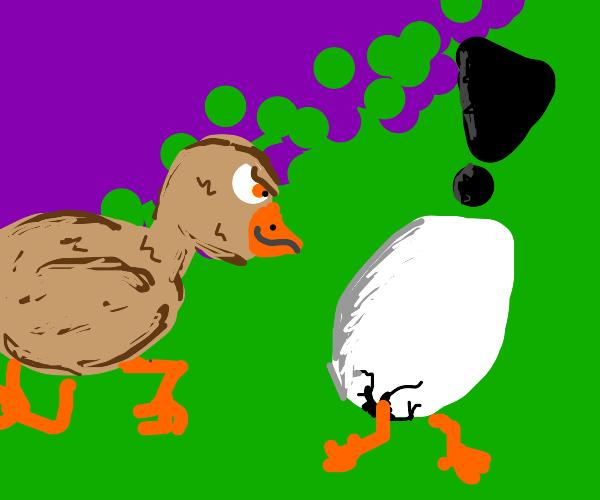 Egg runs away