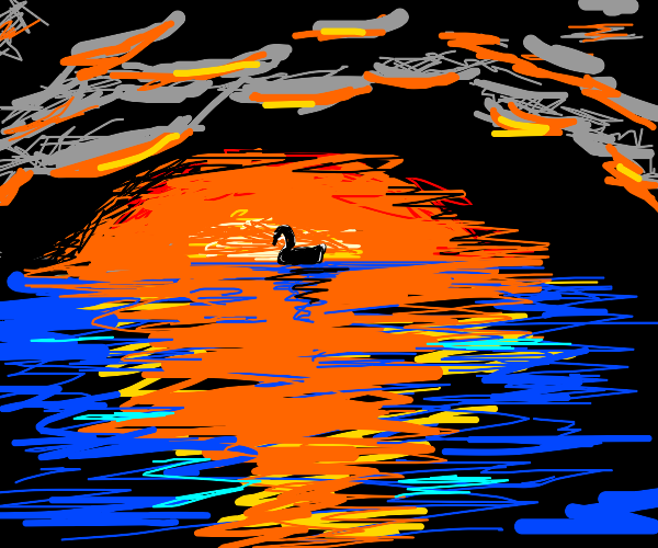 Swan in a sunset