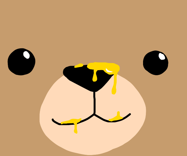 Bear has honey on his nose