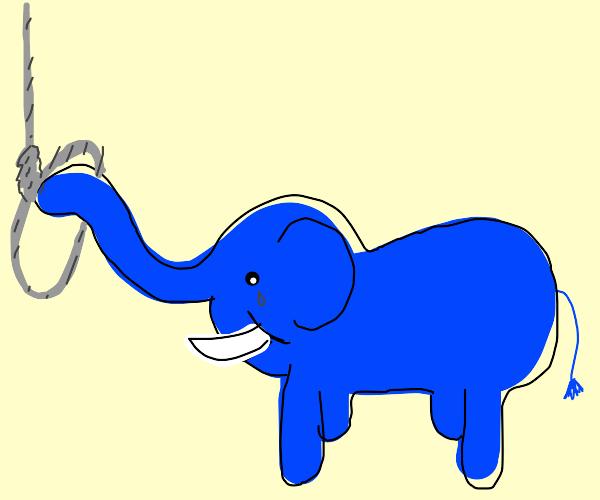 a suicidal elephant