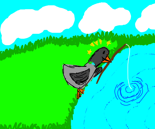 Hopeful pigeon is fishing