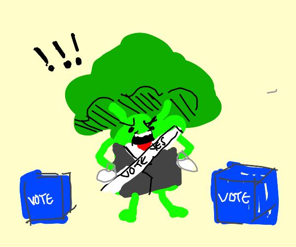 broccoli does democracy