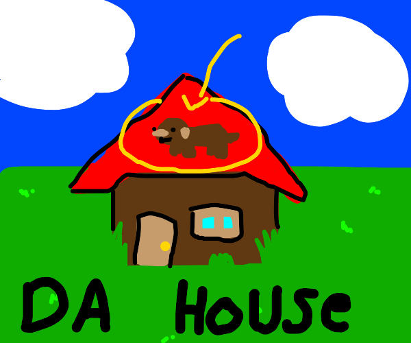 dog on da house