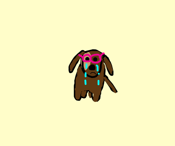 Dog with glasses crying