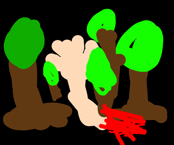 Decapitated arm in a forest