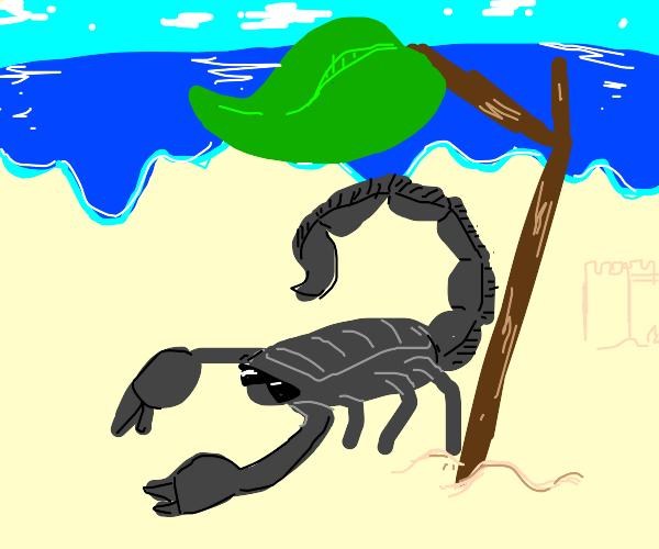 Beach scorpion