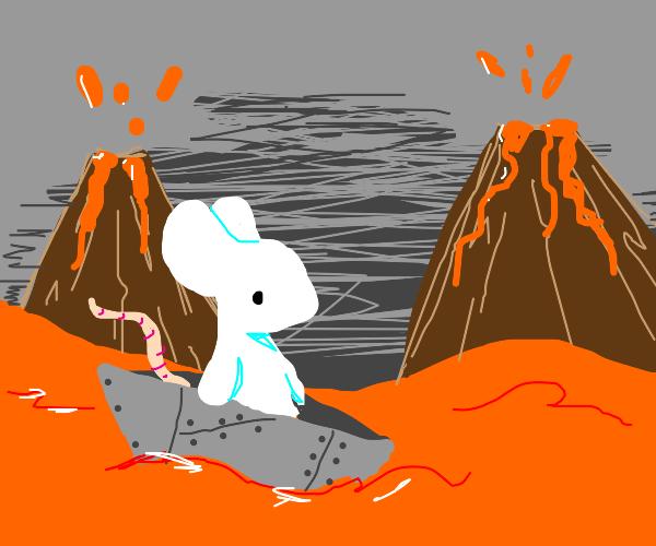 Rat uses metal boat in lava river