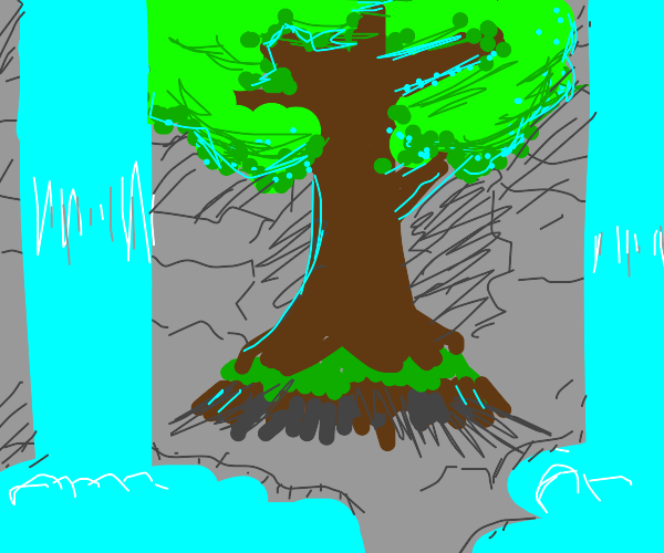 Two springs and one tree in a cave