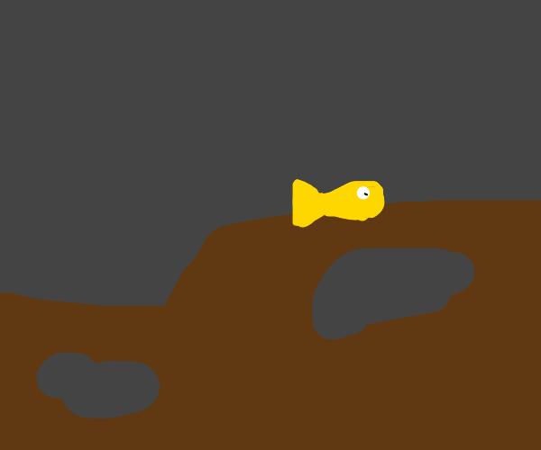 terraria goldfish during rain
