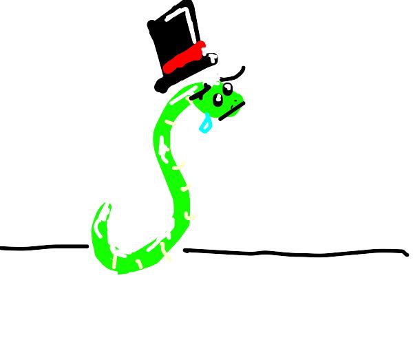 Top hat snake is sad