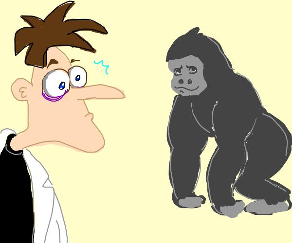 dr. doofenshmirtz shocked at a gorrila