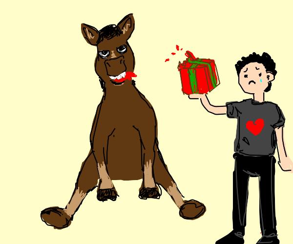 Dapper horse eats a christmas present