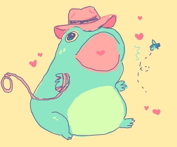 happy frog with cowboy hat