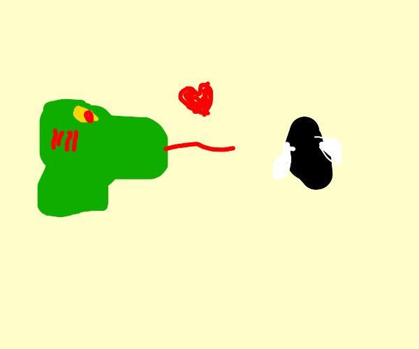 Lizard Woman Flirting With a Fly