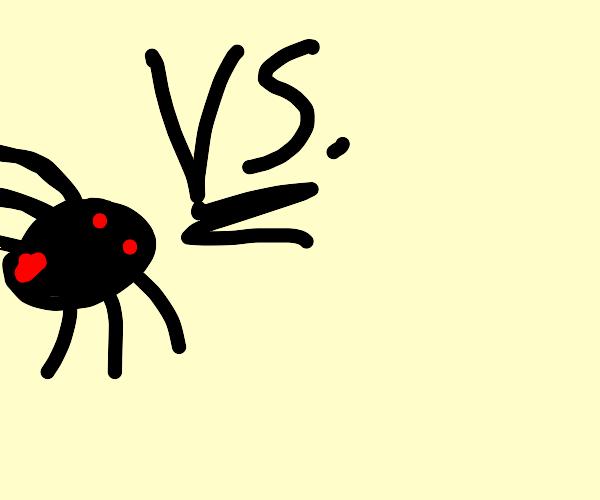 spider vs nothing