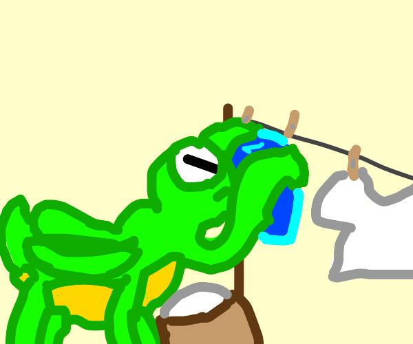Mantis doing laundry