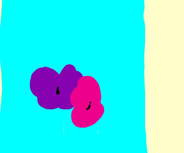 purple bouquet of flowers