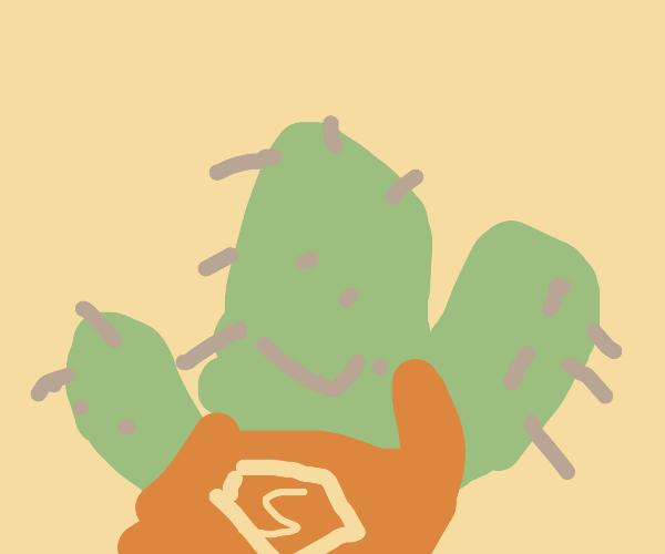 Super Cactus, on my way!