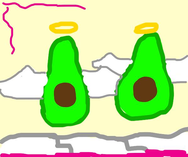 The avacado angels