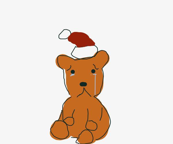 dog abandonned on Christmas