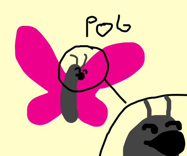 is this a (pog)? butterfly meme