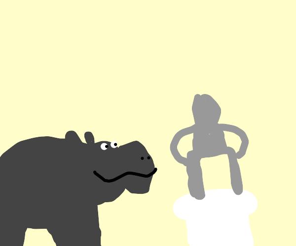 Hippo views a statue
