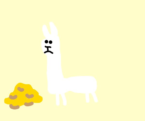 L-Shaped Llama Finds Treasure