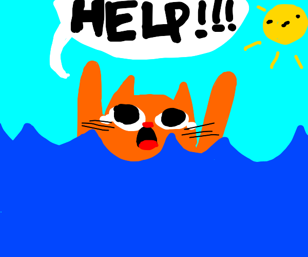 drowning cat
