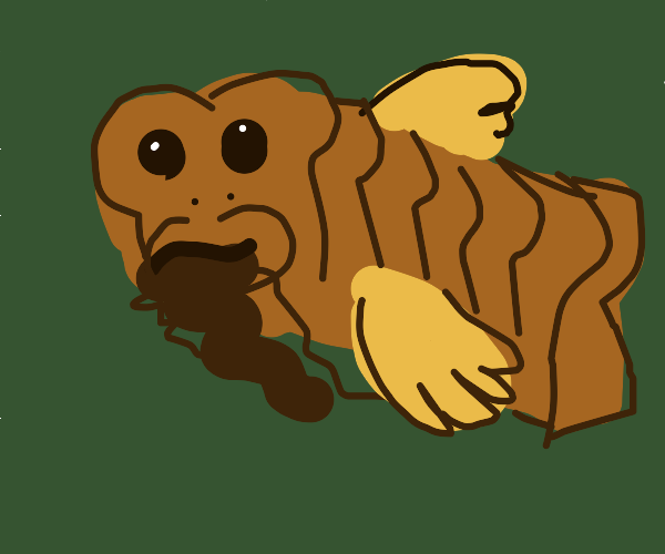 Toastfish with a beard