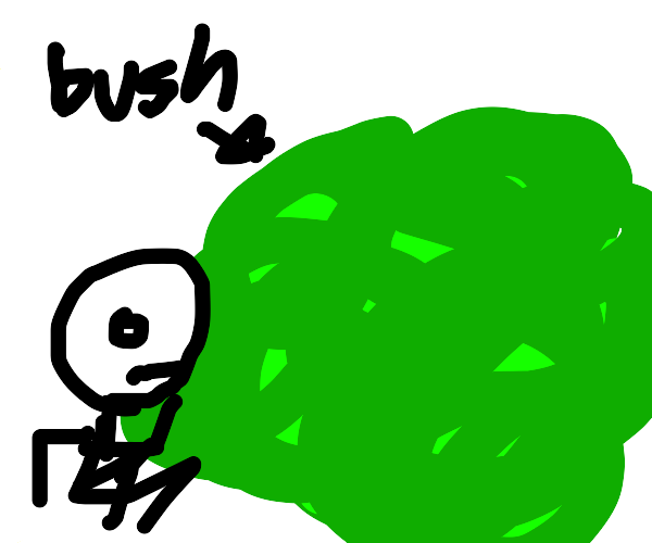Somone hiding behind the bushes