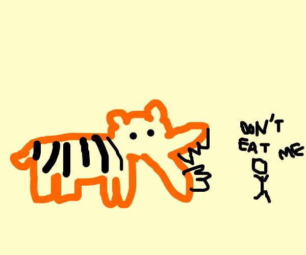 a tiger eats a little boy