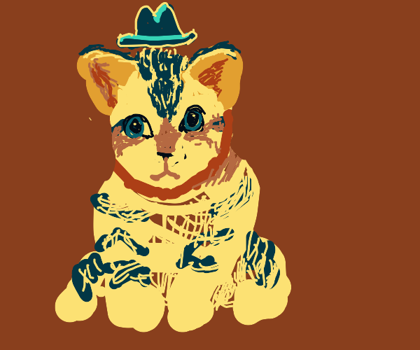 Cat with a cowboy hat