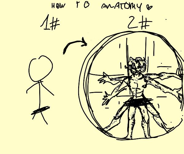 Anatomy of the artist