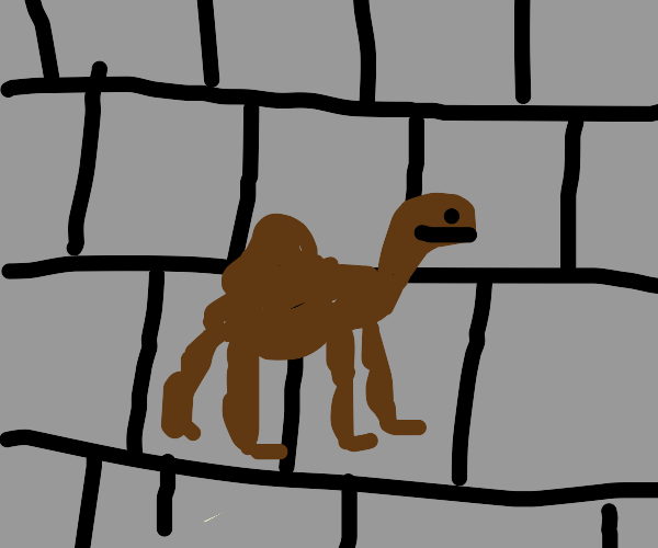A camel spray painted on a brick wall