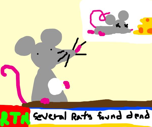 RTN (Rat Television Network)