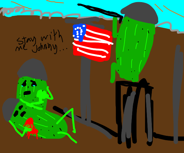 american pickle soldiers fight in war