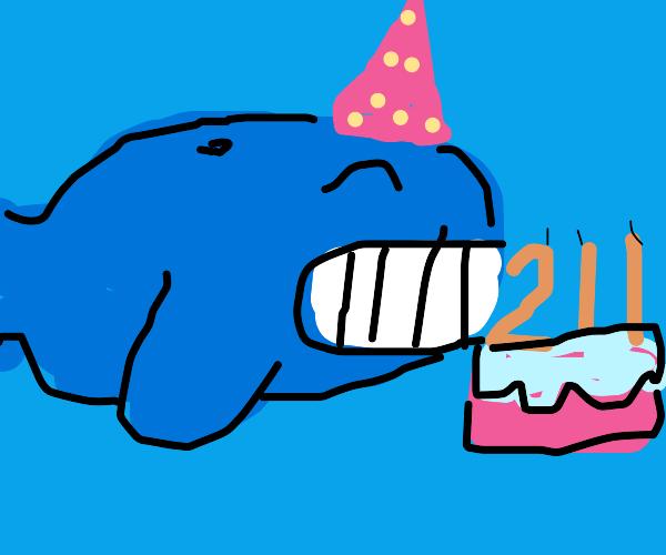 Whale celebrating it's 211th birthday