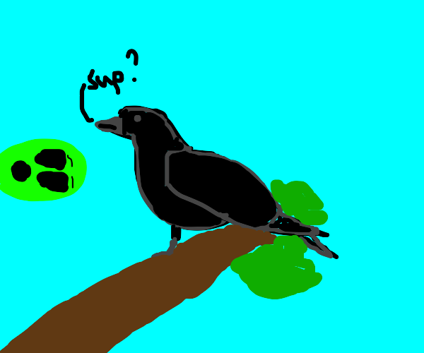 Alien is amazed by talking crow