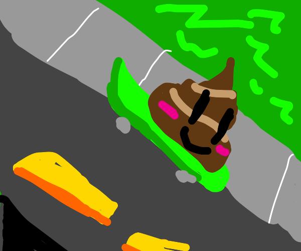 Poop sliding on road