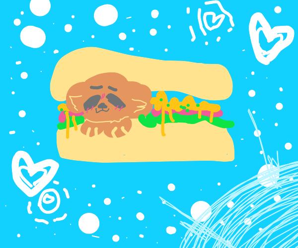 how to make a DOG SANDWICH
