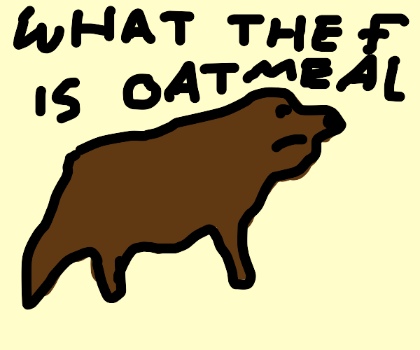 Dog life questions (wtf is oatmeal)