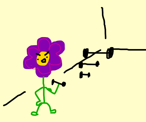 A flower getting gains at the gym