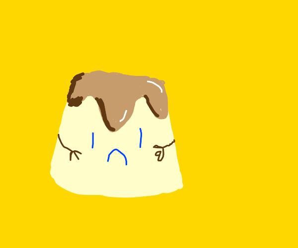sad pudding