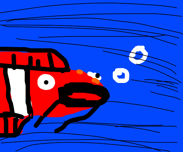 A black and red fish