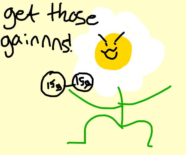 fitness daisy