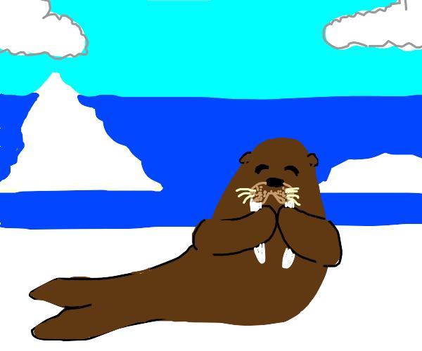 Silly Walrus