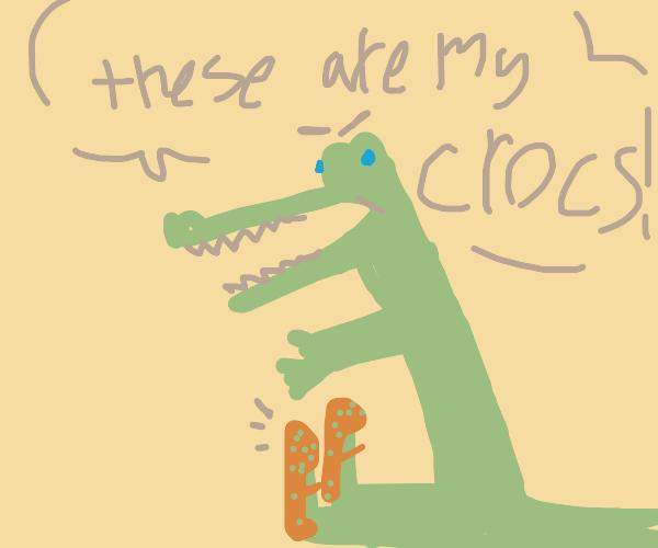 crocodile with crocs on